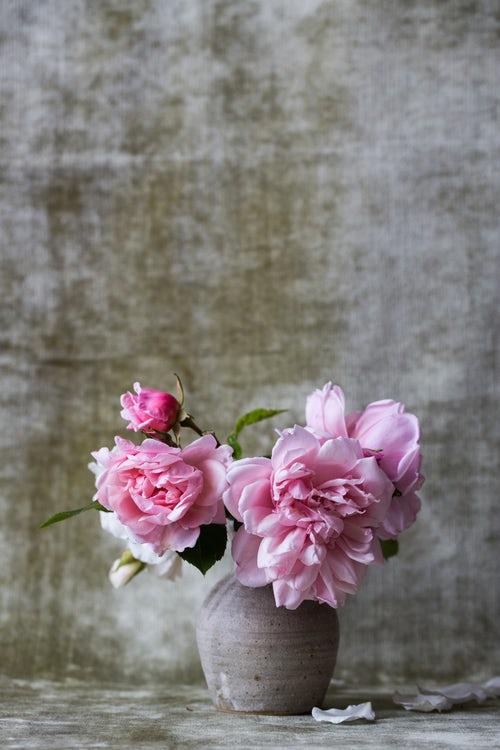 Notas de perfume 8