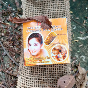 Creme Zingiber Cassumunar; Thanaka e Curcuma